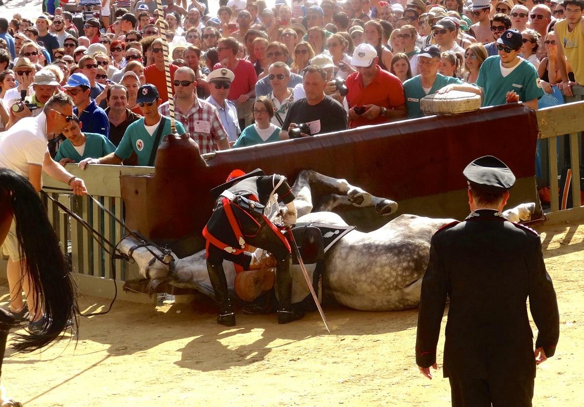 cavallo-caduto