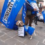 L'attivista Carmine De Nuzzo e una mascotte degli Animalisti Italiani