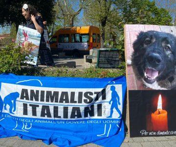 Manifestazione Montefiascone (VT)